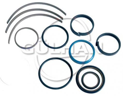 Seal Set (Repair Kit) Of Check Valve (Double) 1
